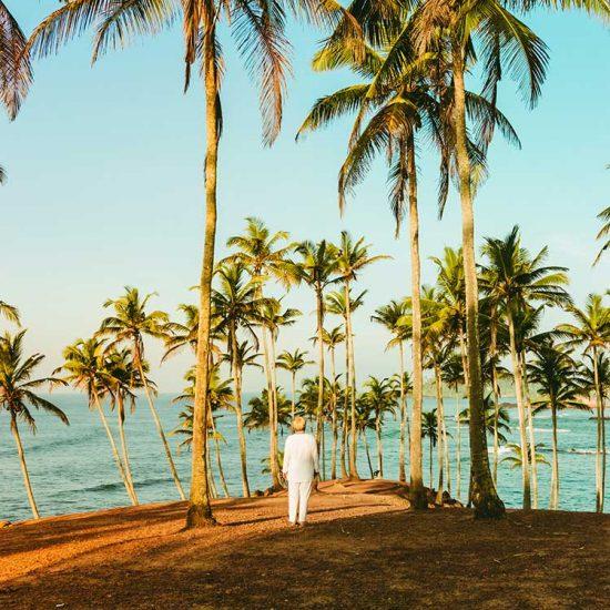 Angela Lala Bruno Ayurveda Coaching Yoga Sri Lanka Coconut Hill 2